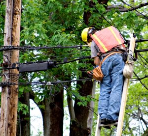 Electric Line Maintenance